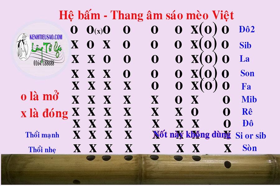 Hệ bấm thang âm học thổi sáo mèo Việt