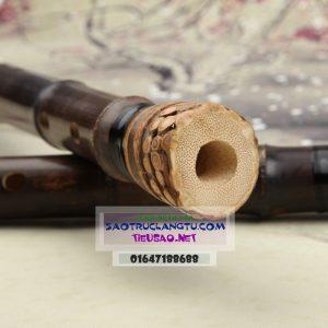 Gốc tiêu trúc tím có rễ được xử lý đẹp