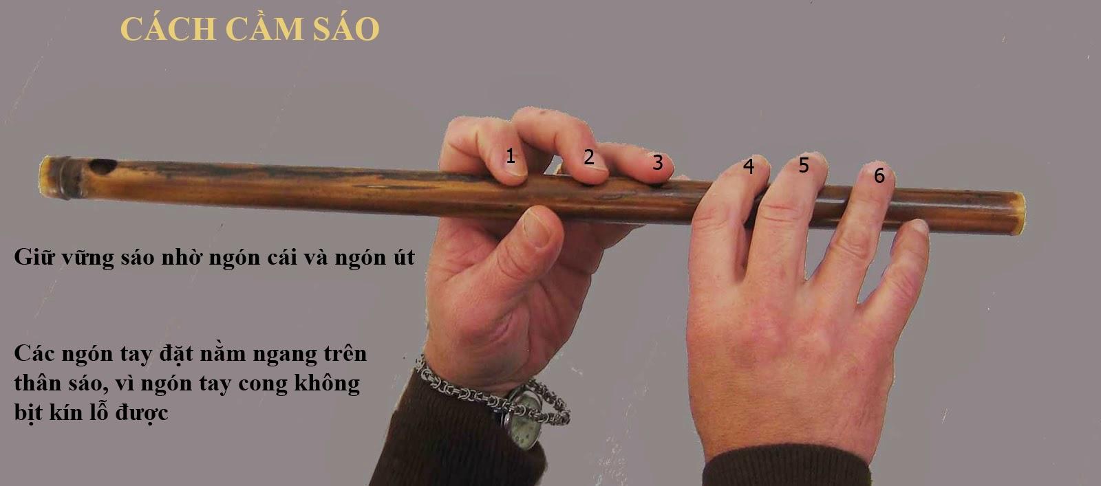 Cách cầm sáo